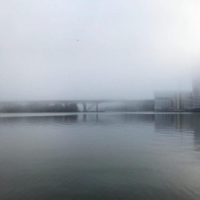 Årstabron.   #dimma #foggy #foggymorning #liljeholmen #nofilter #stockholm #stockholmcity #urbanphotography #water #bridge #bro #liljeholmen #årstaviken #january #fotoprojekthelliden